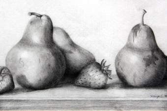 Pears and Strawberries, 1997