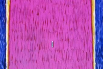 The Door, 2002