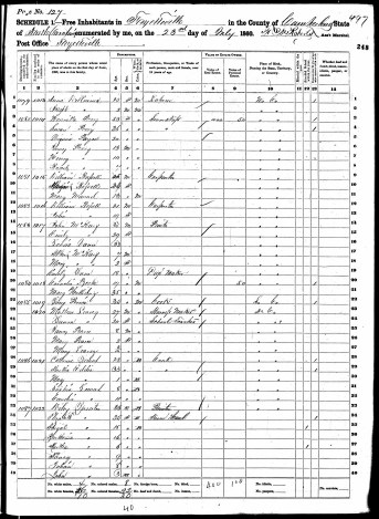 Wiley Lassiter 1860 census
