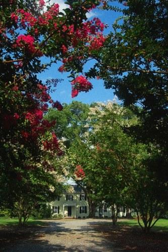 """River House"", Photo by Margo Millure ((www.margomillurephotography.com))"