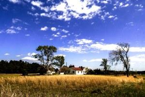 """Deep in the County"" Photo by Margo Millure (www.margomillurephotography.com)"