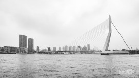 Skyline Rotterdam - Erasmusbrug