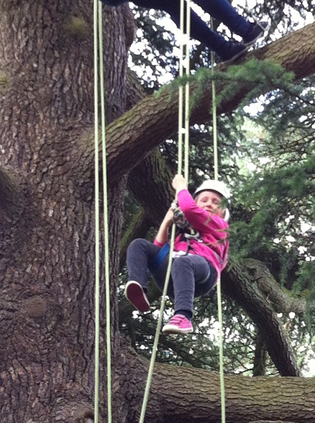Our lovely girl completing her 50things challenge: no.1 Climb a tree