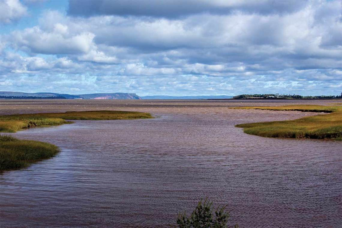 Wolfville Dykes October 2015