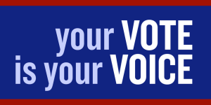 vote-your-voice