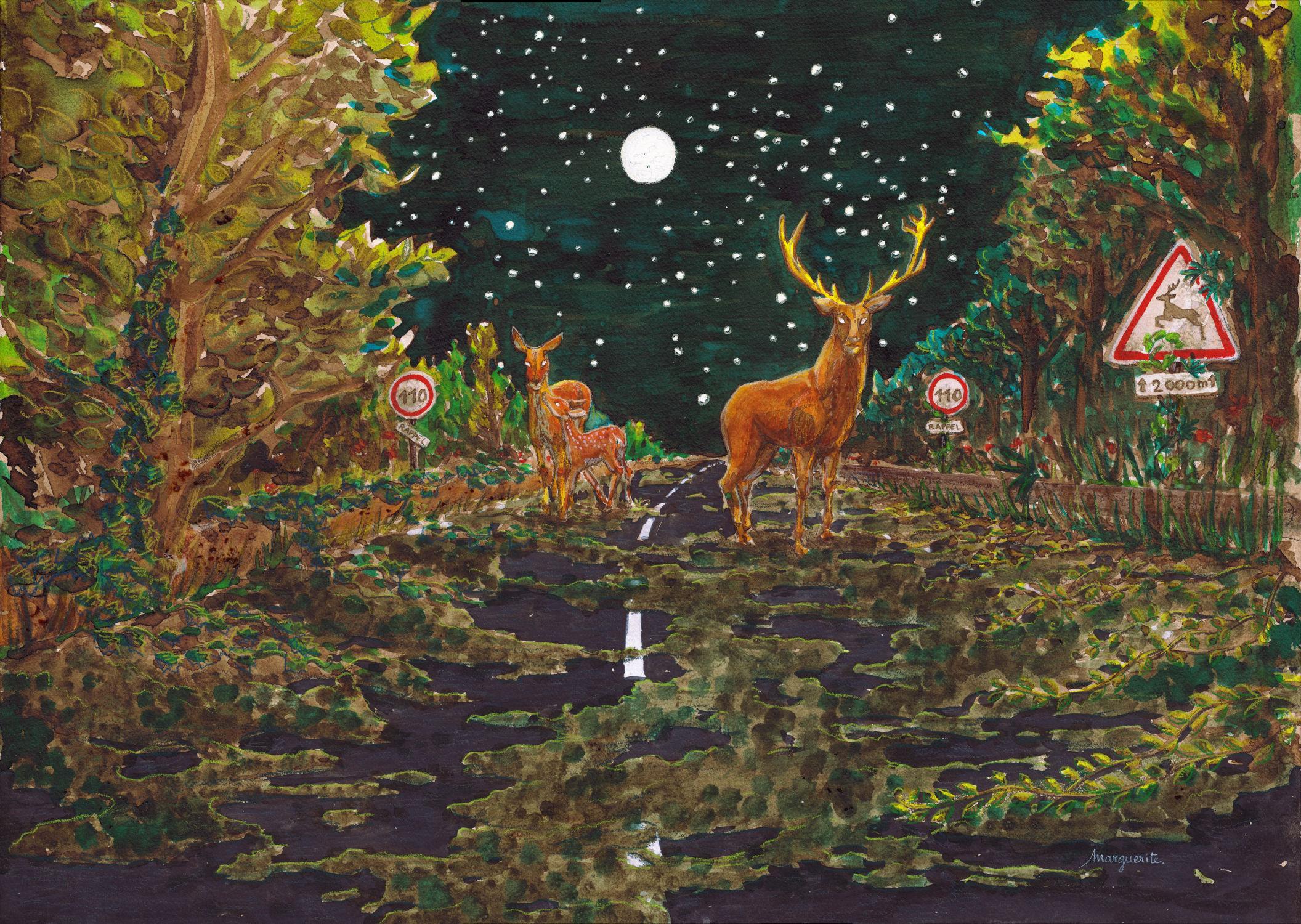 Autoroute - illustration de Marguerite Le Bouteiller
