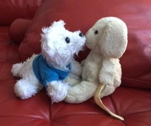 Kiseki & Pippy