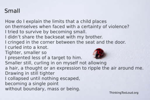 Ladybug with a story about CPTSD