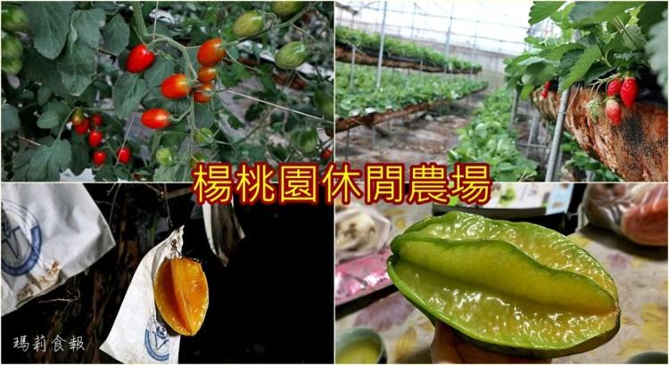 楊桃園休閒農場|採楊桃、番茄、草莓 吃土雞料理 彰化花壇輕旅行 彰化親子遊推薦