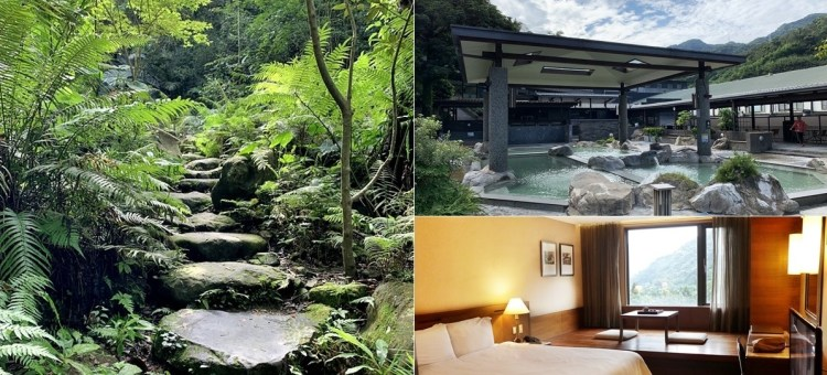 大板根森林溫泉酒店|享受低海拔原始雨林的森林浴與露天溫泉SPA的美人湯 新北景點
