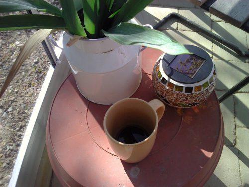Morgonkaffe i växthuset maj 2011