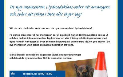 Clinic om nya lydnadsmomenten i Kalmar