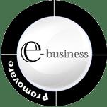 Promovare E-business