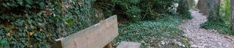 psicoterapia-reichiana-valencia-denia
