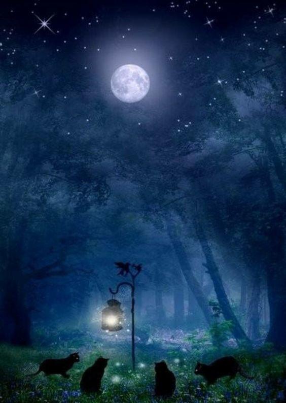 013c5b30f2a Lua Cheia em Escorpião – A maldição – ou a bênção – do Eterno ...