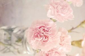 mariage-boheme-champetre-fleur-toulouse