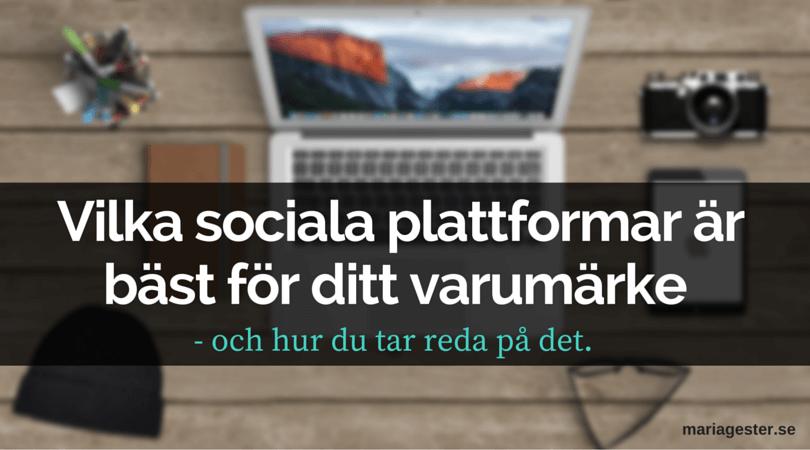 Vilka sociala plattformar är bäst för ditt varumärke - och hur du tar reda på det.
