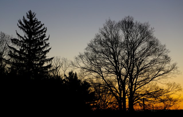 Day 293:3 This morning in ohio
