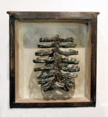 Rib cage, bronze in drawer