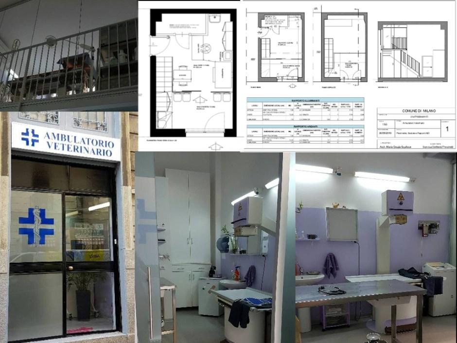 Ambulatorio veterinario - Progetti e realizzazioni