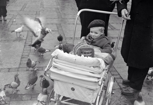 Two children in a pram from the fifties looking at the doves at the Town Hall Square in Copenhagen