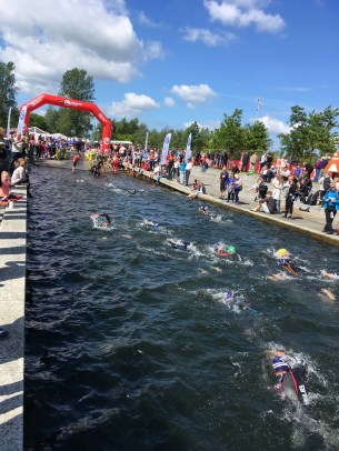 Swimmers finishing the 1.9 km Fulgsang lake at the Challenge Herning Triathlon 2017