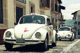 Taxco - Les petites coccinelles