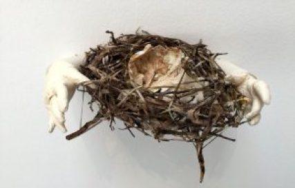 nidos-de-ausencia-destacada