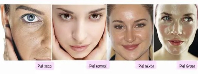 tipos de piel 300x112 - Your Skin is your First Protection.
