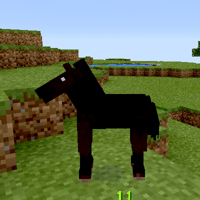 A baby horse.