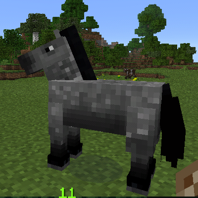 A gray horse.