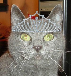 Queen Katya