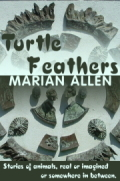 Turtle Feathers 120