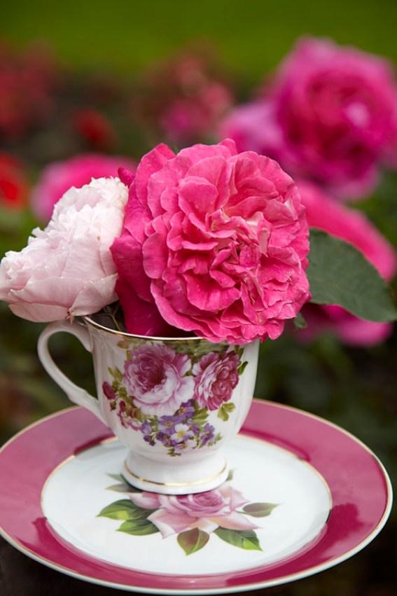 Blomster i en kaffekopp med roser på...