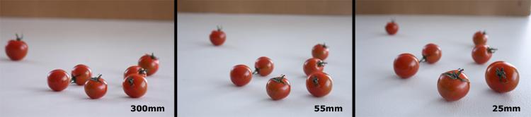 Marianne-de-Bourg-Ingeniørfruen-redder-verden-med-fototips-tomater