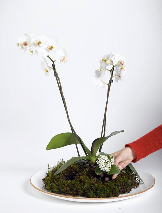 Ingeniørfruen lager blomsterdekorasjon 4