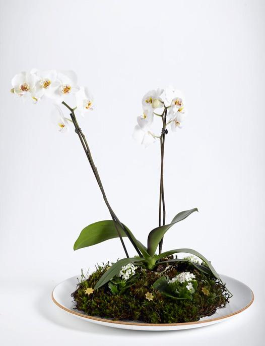 Ingeniørfruen lager blomsterdekorasjon 5
