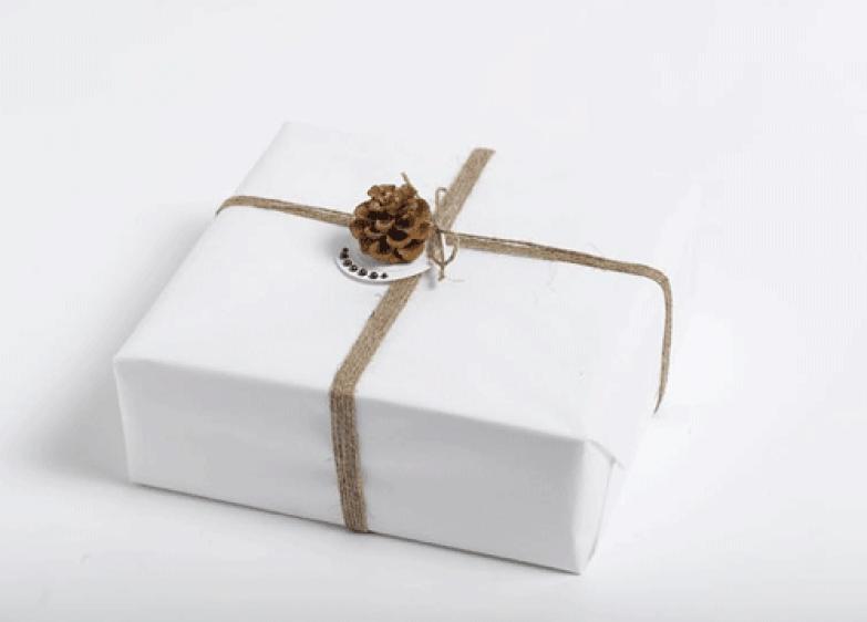 Ingeniørfruens julegave til kjæresten i hvitt med kongle