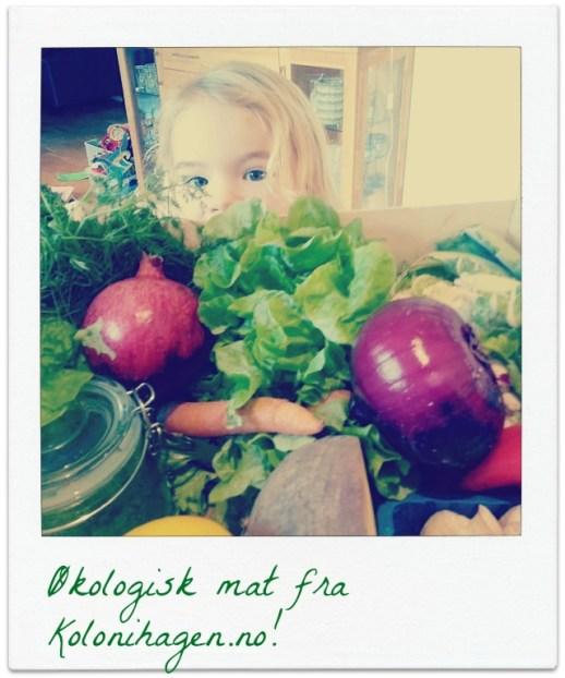 Økologisk matkasse fra Kolonihagen