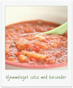 Ingeniørfruens-hjemmelagde-salsa-med-koriander