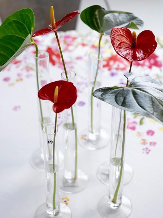 IDEER TIL 17.MAIBORDET - Rød Flamingoblomst (Anthurium)