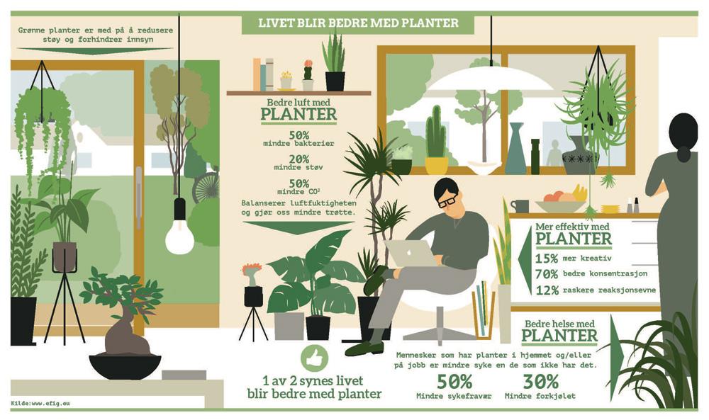 INTERIØRTIPS-Bedre-helse-med-grønne-planter