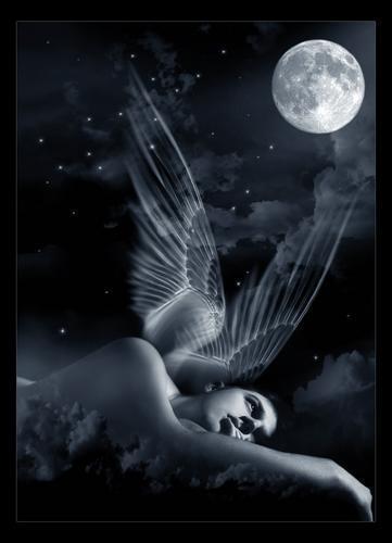 angel-luna