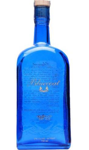 Bluecoat ecológica (ginebra premium)