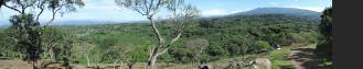 La Hilda desde Las Piedras. Siembra 2014. Variedad Caturra. Altitud: 1217 msnm.