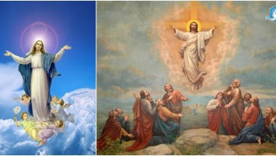Photo of صعود الرب يسوع الى السماء وانتقال مريم العذراء… هل هنالك فرق؟