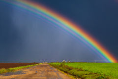 real-rainbow-beautiful-dirt-road-38766572