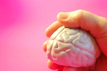 Мозг в руке