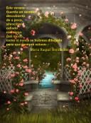 del libro Amor Amor Amor 2