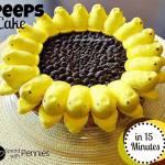 15 Minute Sunflower Peep Cake